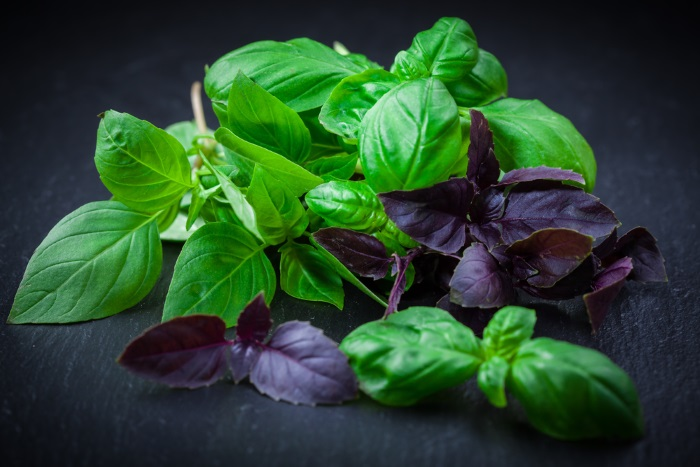 How To Use Basil For Acne Treatment