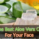 The Best Aloe Vera Gel For Face, Skin, And Acne Reviews 2017