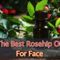 The Best Rosehip Oil For Face Reviews 2017
