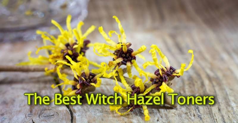 The best witch hazel toner brand
